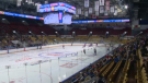 The Kitchener Rangers on the ice at the Aud. (Mar. 1, 2019)