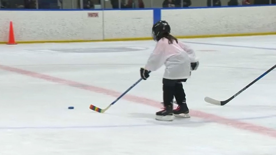 Organizers of the Try Girls Hockey event on Sunday say there are lots of ways girls can get into the sport no matter where they live in the city.