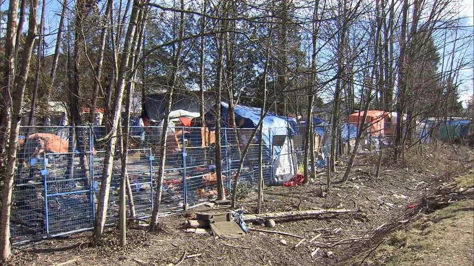 Province sets deadline for housing in Maple Ridge