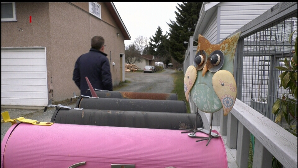 Donnie says he 'donutized' his yard to keep Pepper and Pearly's Grove looking alive. (CTV Vancouver Island)