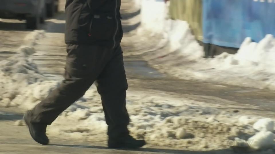 Montreal pedestrian
