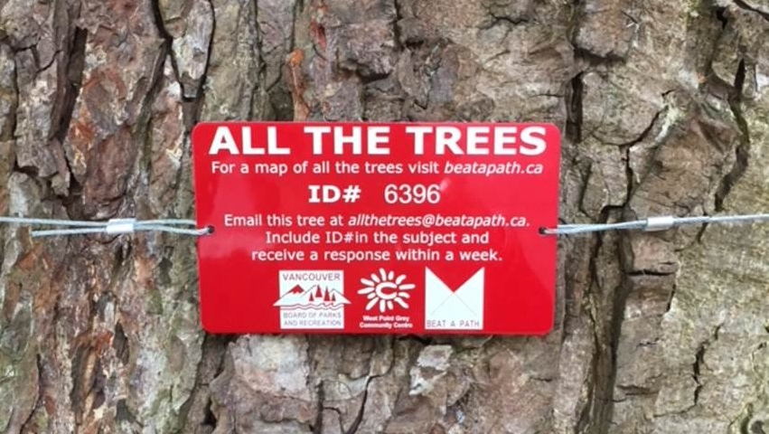 'Email a tree': Vancouver gets gov't waste award for $12K art project