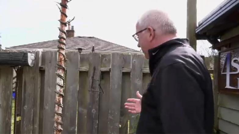 twisty trunk tree sign off