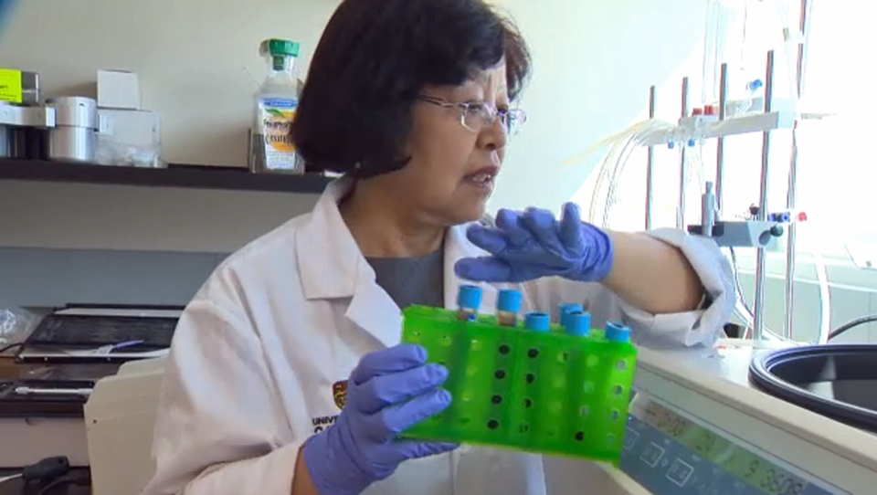 Clinical Study Into U Of C Developed Breast Cancer