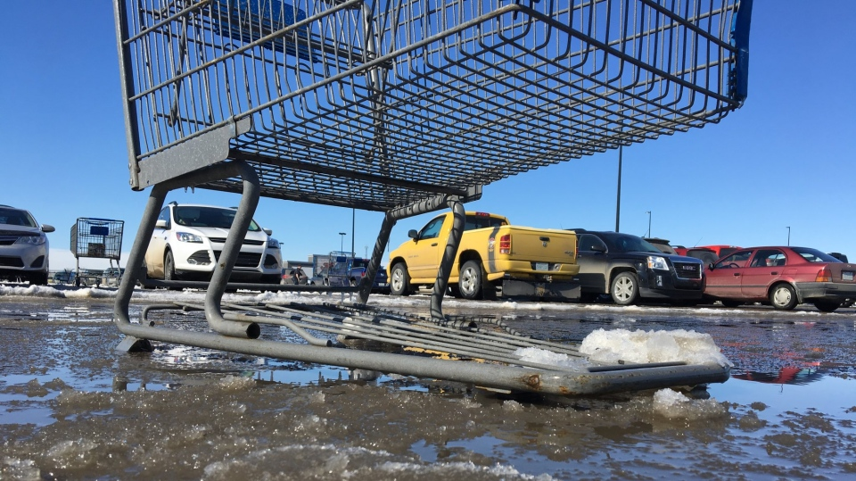 A shopping cart sits submerged in one of Regina's many puddles on March 14, 2019. (Gareth Dillistone/CTV Regina)