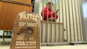 CTV Montreal: Terry DiMonte's live arrest
