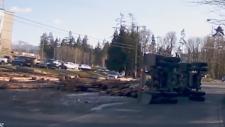 logging truck video