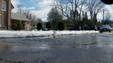 Flooding in Bolton, Ont.