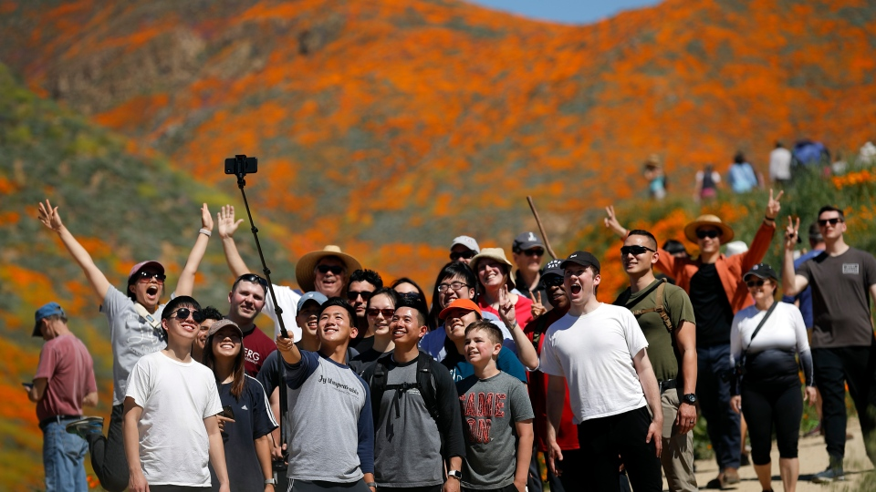 People pose for a picture among wildflowers in bloom Monday, March 18, 2019, in Lake Elsinore, Calif. (AP Photo/Gregory Bull)
