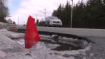Maritimers are fed up with potholes this year. The City of Halifax says it has already repaired about 1,500 potholes, and there are lots left to fix.
