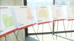 Ward boundaries could change