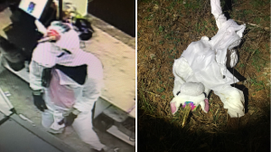 Police in Maryland say they've captured an elusive unicorn, since unmasked as a man suspected of robbing a convenience store last week. (Baltimore County Police Department)