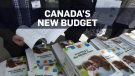 Here's a look at the Liberal government's budget