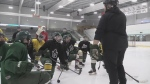Elmira teens vie for hockey championships