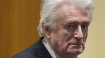 Former Bosnian Serb leader Radovan Karadzic enters the court room of the International Residual Mechanism for Criminal Tribunals in The Hague, Netherlands, Wednesday, March 20, 2019. (AP Photo/Peter Dejong, Pool)