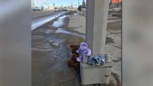 Teddy bears and flowers on Isabel Street near where a four-year-old and her mother were hit by a car Monday. (Jason Gaidola/CTV News.)