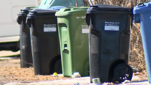 Calgarians who put out more garbage than their black bin can hold may be subject to additional costs if a recommendation to city council is approved
