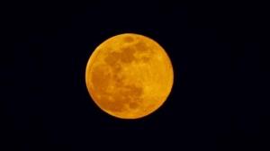 Tonight's beautiful full moon over Carman! Photo by Bev McLean.