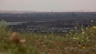 In this Sunday, March 17, 2019, photo, the Islamic State group's last pocket of territory in Baghouz, Syria, as seen from a distance. (AP Photo/Maya Alleruzzo)