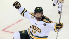 Kitchener native Loren Gabel has been named the top NCAA Division I women's hockey player of the year.