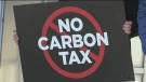 Local MPP's talk about Carbon Tax Impact