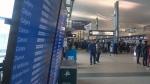 Fog airport