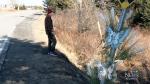 Police continue to investigate fatal N.S. collisio