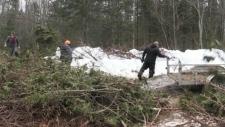 Deer Save Efforts in Algoma