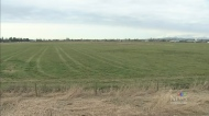 NDP under attack over farm changes