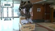 CTV Regina: A jurassic discovery made in Sask.