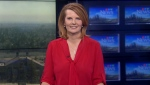 News at Six - Tara Nelson - March 25, 2019