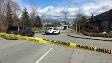 south surrey fatal crash