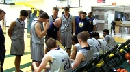 CTV Windsor: Basketball coach resigns