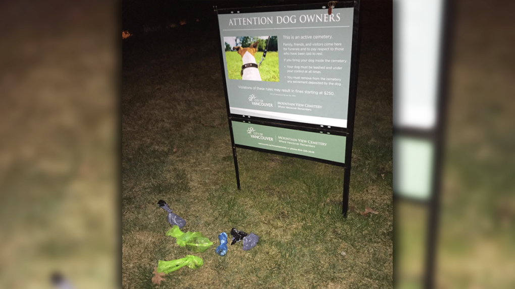 Dog poo in Mountain View Cemetery