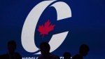 The Conservative Party of Canada logo is seen in this file image.