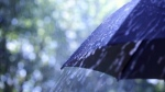 Environment Canada has issued a special weather statement for Waterloo Region and Wellington County due to expected heavy rainfall.