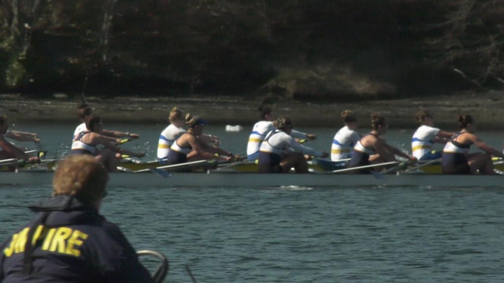 brown cup rowing