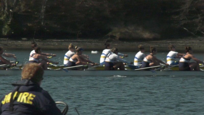 UVic and UBC men's and women's rowing teams participated in the annual Brown Cup in the Gorge Waterway on March 30, 2019. (CTV Vancouver Island)