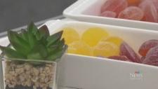Zen Zingers gummied edibles