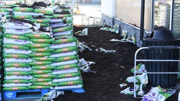 Port Alberni Vandals Dump Roughly 100 Bags Of Soil Ctv News
