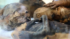 Egypt's antiquities ministry said that it happened upon the tomb after officials arrested a group of robbers that was digging illegally for artifacts.