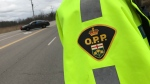An OPP officer seen next to a cruiser on April 8, 2019. (Dan Lauckner / CTV Kitchener)