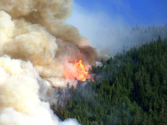 A forest fire burns fire near Bella Coola, B.C. (Viviane Garcia / MyNews.CTV.ca)