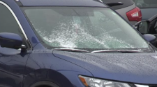 Snow on the windshield of a car