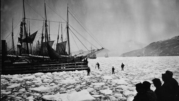 Newfoundland settlers