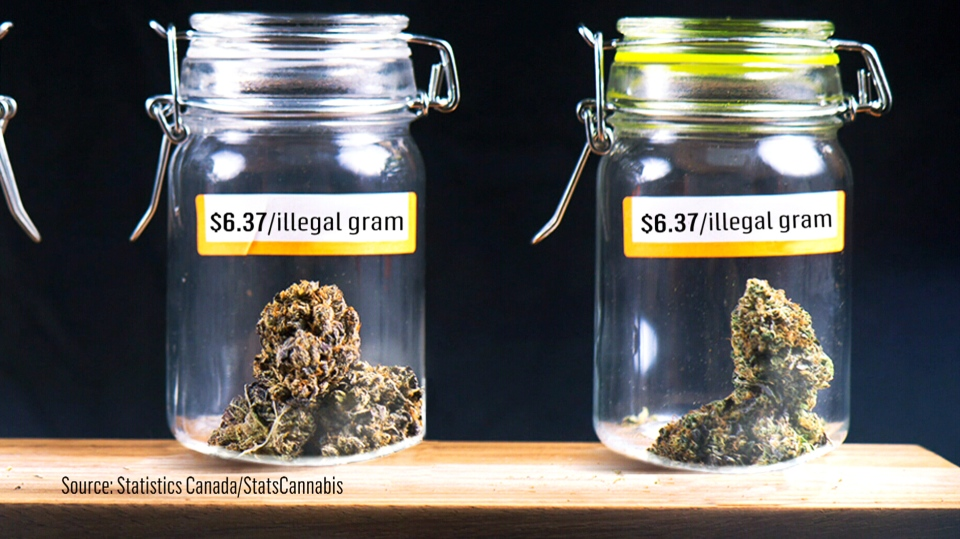 A graphic from Statistics Canada shows the average price per gram for black market cannabis. (StatsCan)