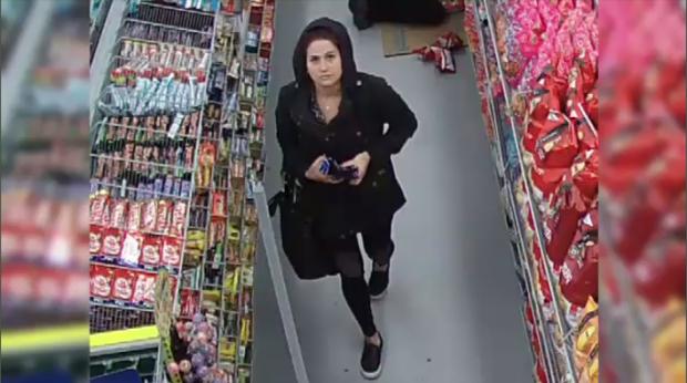 Dollarama theft suspect