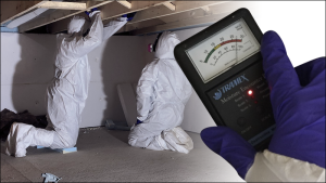 Mold and high moisture readings found in crawl space.