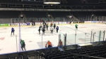 London Knights Game 7