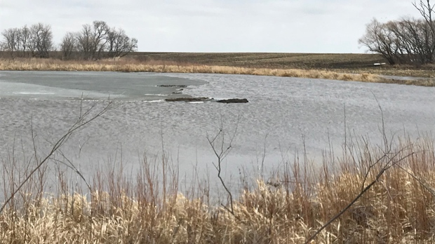Niverville farmer Kevin Stott said the Red River could still spill on up to a nearly one-third of his 2000 acres. (Josh Crabb/CTV Winnipeg)